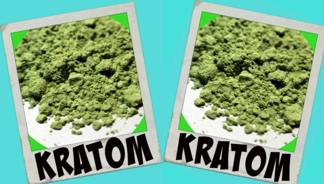 Kratom Overview – What To Expect