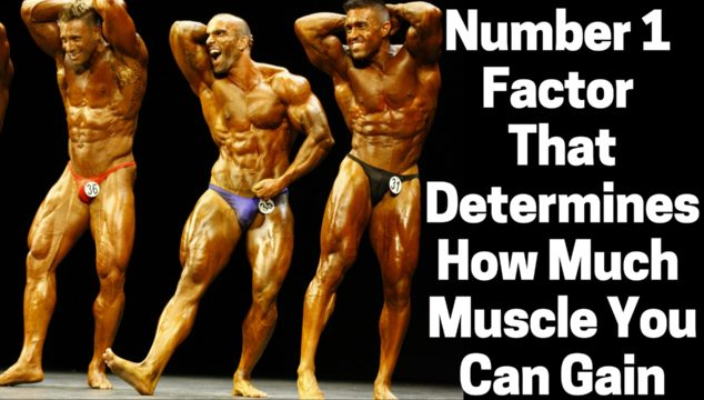 The Number 1 Thing That Determines How Much Muscle You Can Gain