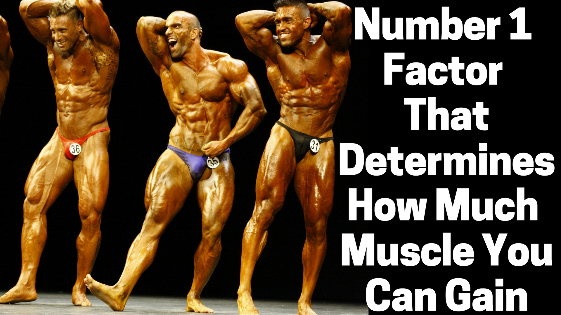 The number 1 thing that determines how much muscle you can gain fandeluxe Image collections