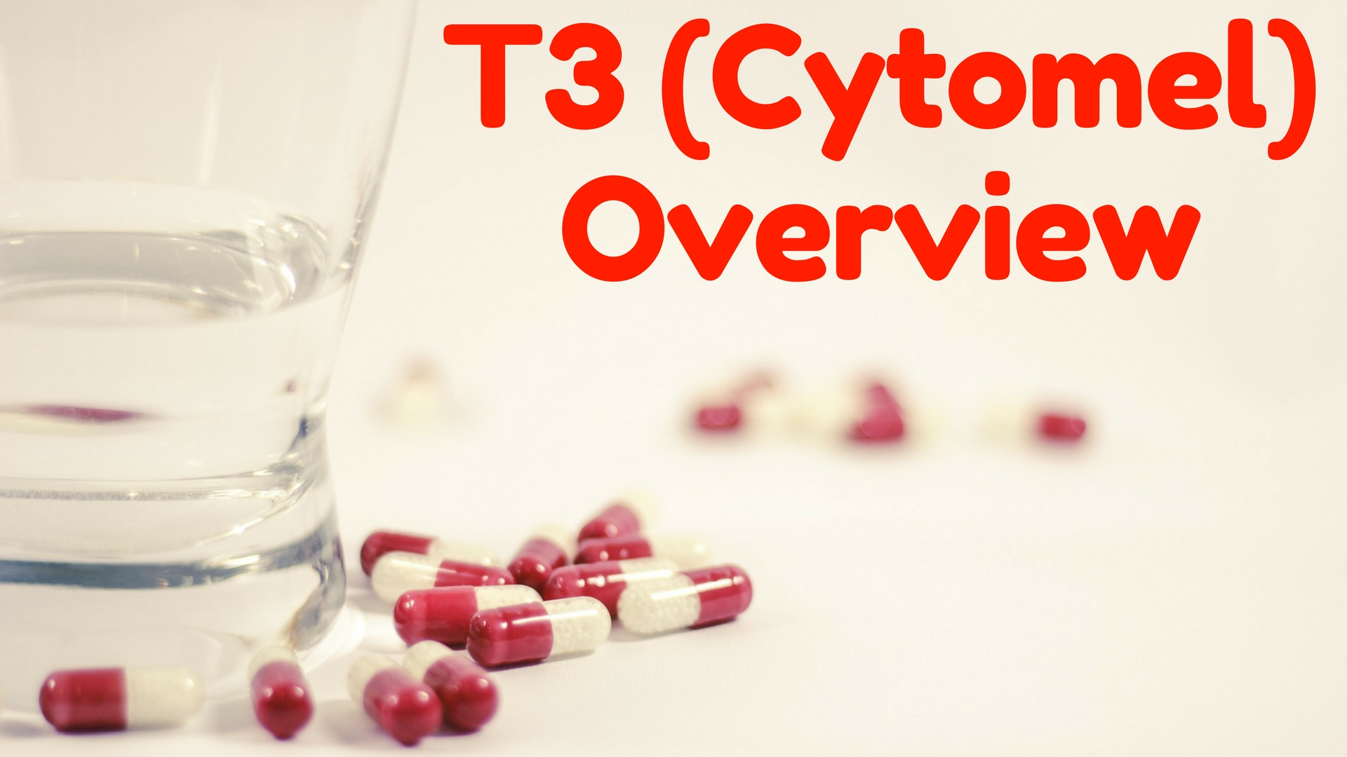 T3 Cytomel Overview What To Expect