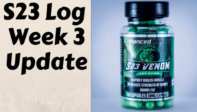 S23 Log – Week 3 Update