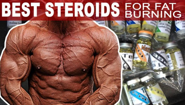 The Best Steroids For Burning Fat